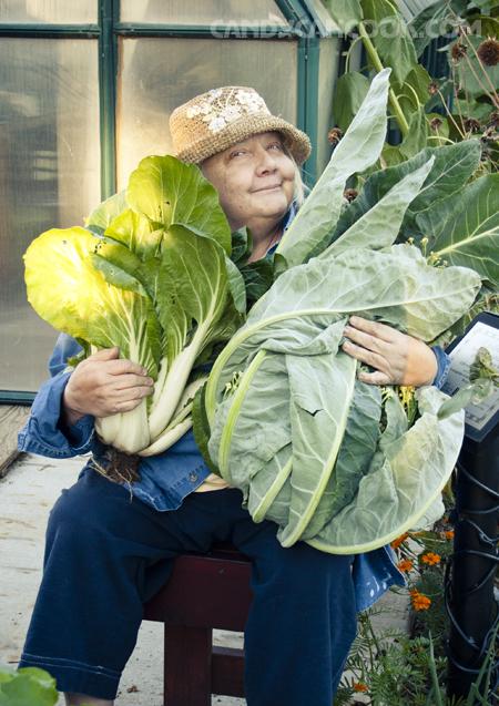 Niềm vui của một người nông dân Mĩ khi thu hoạch - bất chấp thời tiết sắp đóng băng :X