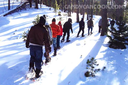 Đoàn người bắt đầu chuyến đi tìm cây thông đẹp nhất