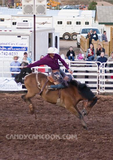 Hình ảnh chàng cao bồi đang tiết chế con ngựa thật đẹp