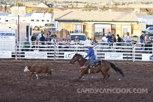 Hình ảnh Rodeo đấu ngựa thật mới lạ