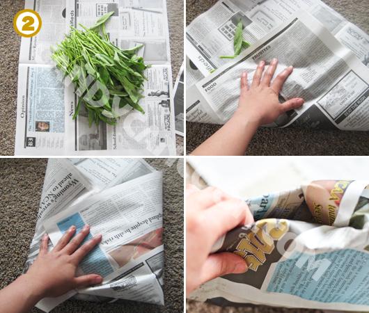 Bọc gọi rau bằng báo giúp rau tươi lâu hơn