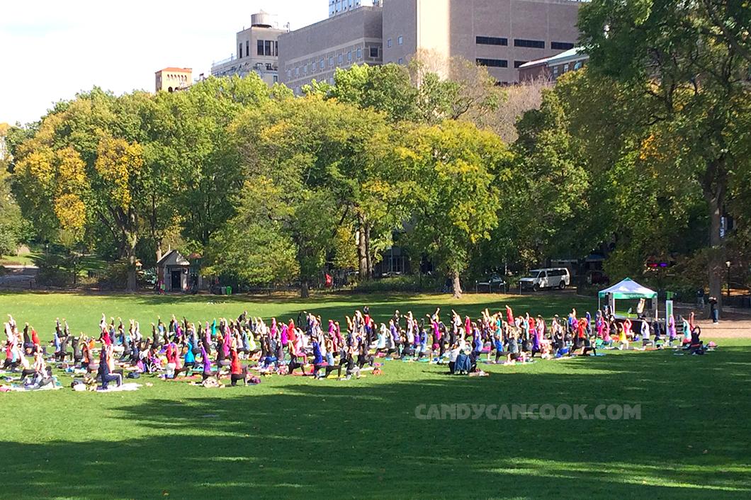 Lớp học yoga miễn phí - Một cảm giác an lành