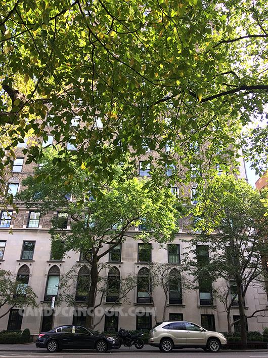 Dọc Central Park là rất nhiều nhà chung cư lâu đời