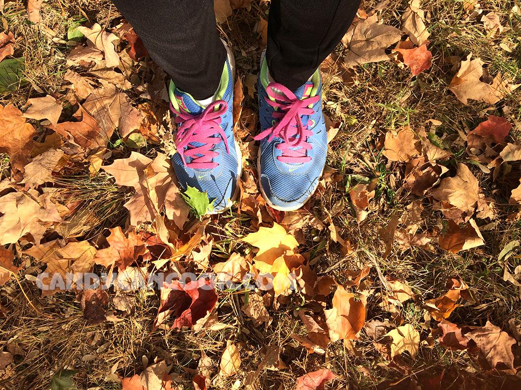 Mời cả nhà theo chân cùng tớ ngắm mùa thu ở Central Park
